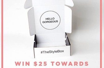 The Style Box Review